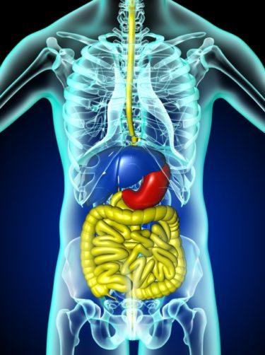 下痢の慢性化から潰瘍性大腸炎になった私の病名発覚から現在までの経緯
