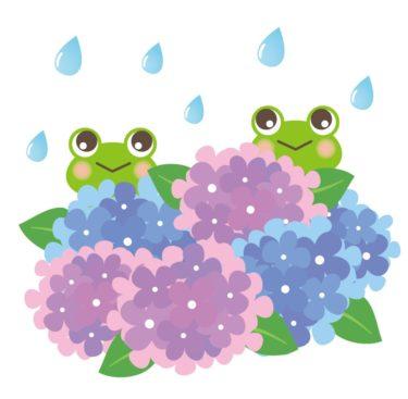 京の蛙と大阪の蛙(中途半端な知恵や知識は逆効果に)