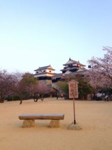 松山城と桜