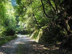 黒瀬ダム公園までの道