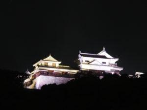 麓からのライトアップ松山城