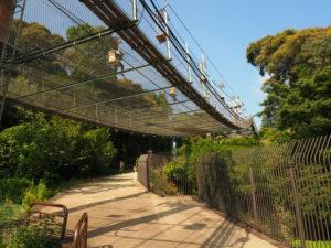 松山城へのロープウェイとリフト