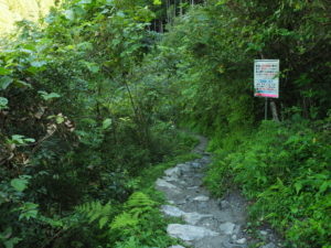 にこ淵への道2