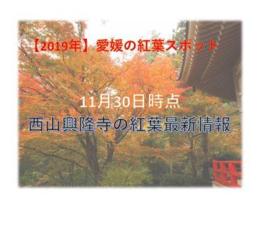 西山興隆寺20191130-0