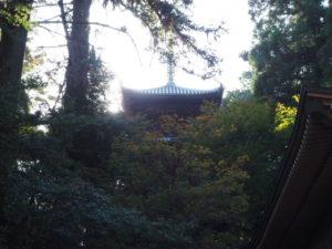 西山興隆寺20191116-6