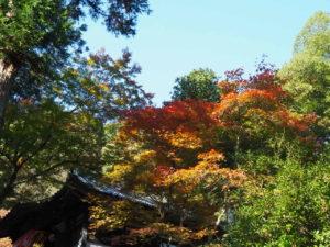 西山興隆寺20191116-4