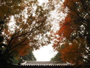 西山興隆寺20191123-1