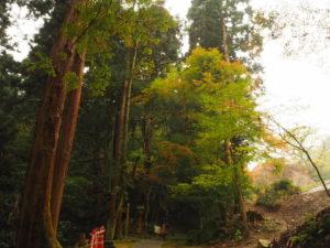 西山興隆寺20191123-2