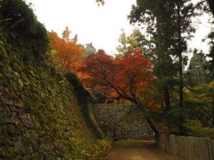 西山興隆寺20191123-4