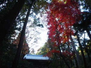 西山興隆寺20191130