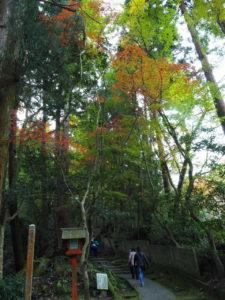 西山興隆寺20191130-4
