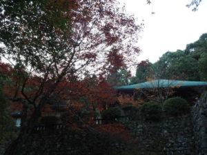 西山興隆寺20191130-5