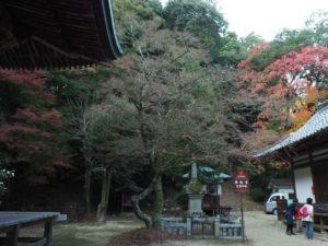 西山興隆寺20191130-6