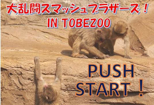 大乱闘スマッシュブラザースin tobezoo