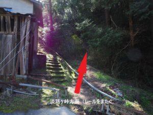 松山淡路ヶ峠ハイキング