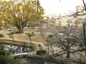 2020年松山道後公園のソメイヨシノ