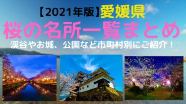 【2021年版】愛媛県桜の名所、花見スポット情報一覧まとめ【ソメイヨシノ】