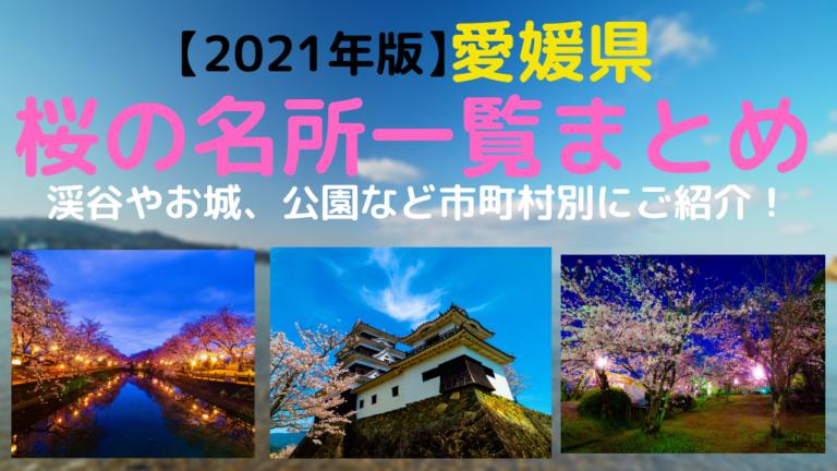 2021年愛媛県桜の名所一覧まとめ