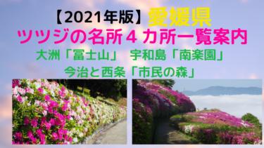 愛媛県ツツジの名所