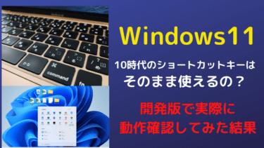 【音声入力】Windows11でも使えるショートカットキー一覧まとめ【開発版で動作確認済】